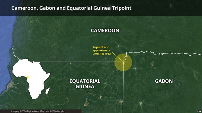 Border Shutdown Hurts Cameroon, Equatorial Guinea Business
