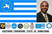 Understanding the Southern Cameroons Struggle