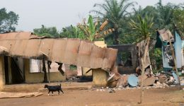 Villages Burn as Cameroon Troops Clash With Separatists