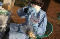 Nigeria: Death toll from Lassa fever reaches 72