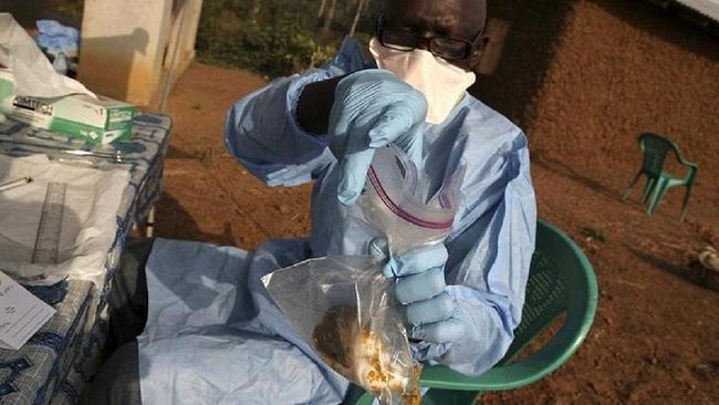 Nigeria: Death toll from Lassa fever reaches 72