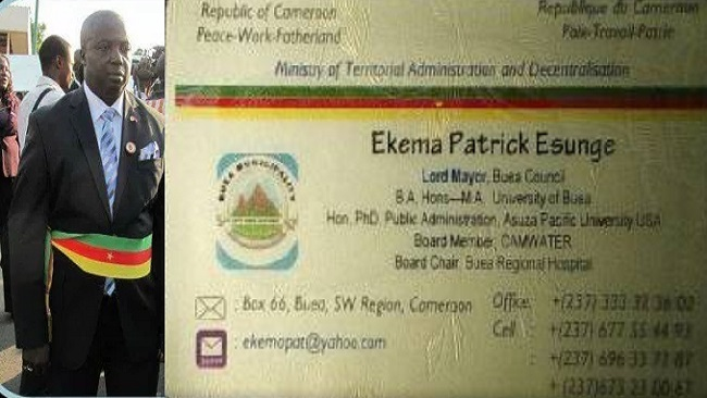 Mayor Patrick Ekema: From a Brobdingnagian to an academic Lilliputian