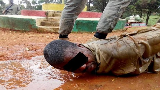 "Biya regime to probe brutality meted out to ""separatist leader"""