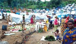 Nigeria, Cameroonian Soldiers Allegedly Starve, Rape Women At IDP Camps