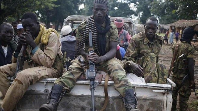 Russia obtains ease on Central Africa arms embargo at UN Security Council