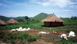Do you know that avolcanic eruptionin Southern Cameroons once killed over 1700 people?
