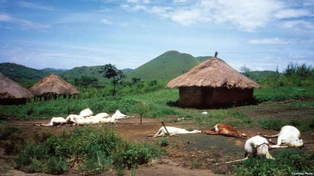 Do you know that a volcanic eruption in Southern Cameroons once killed over 1700 people?