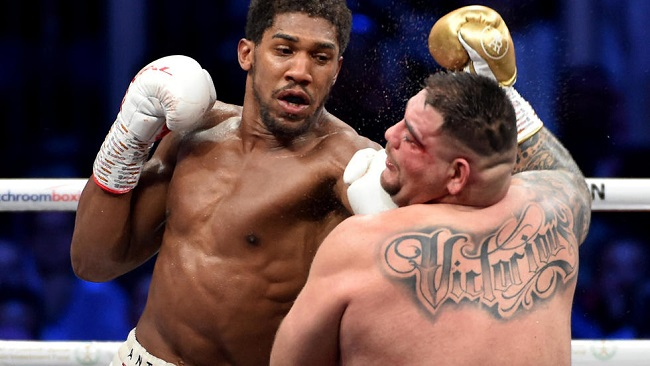 Boxing: Joshua offers to be Fury's sparring partner if it helps him beat Wilder