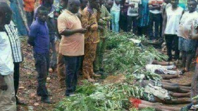 Ngarbuh Massacre: Biya regime's U-turn embarrassing, leaves doubts about the Yaounde version