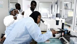 WHO warns African health systems ill-equipped to respond to coronavirus outbreak