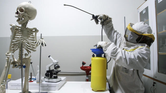 Coronavirus cases in US surpass 500, deaths rise to 22
