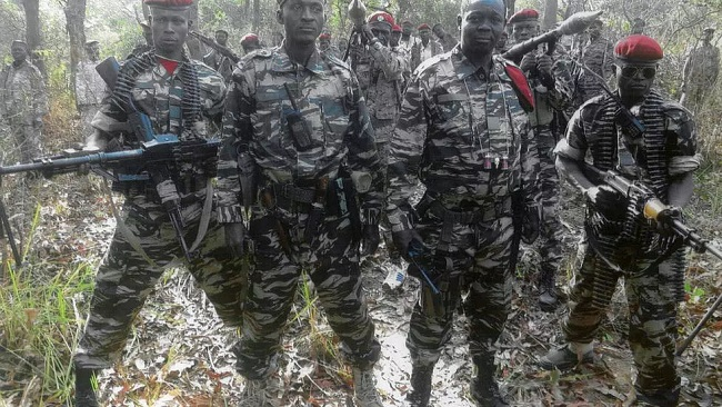 UN slaps sanctions on Central Africa rebel chief