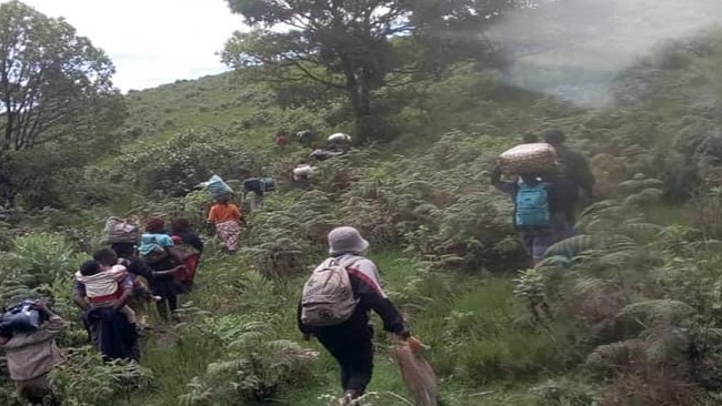 Southern Cameroons War: Dozens flee as Biya regime forces advances on Pinyin