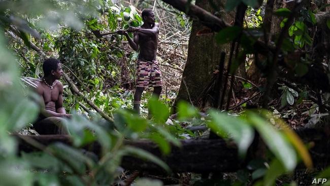Biya Regime Says No COVID-19 in Indigenous People Yet
