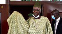 Mali: Designated interim president makes first public appearance