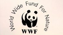 "WWF Admits ""Sorrow"" Over Human Rights Abuses in Southern Cameroons"