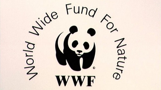 """WWF Admits """"Sorrow"""" Over Human Rights Abuses in Southern Cameroons"""