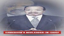 Biden should give Biya 48 hours to step down