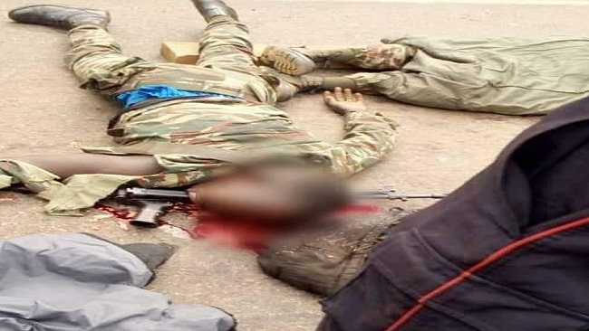 Southern Cameroons Crisis: Suicide killing more French Cameroun troops than Amba Fighters