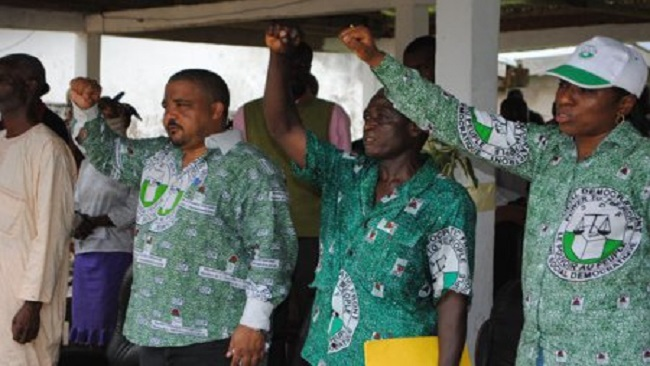 SDF wants Senate polls annulled for entire Southern Zone region