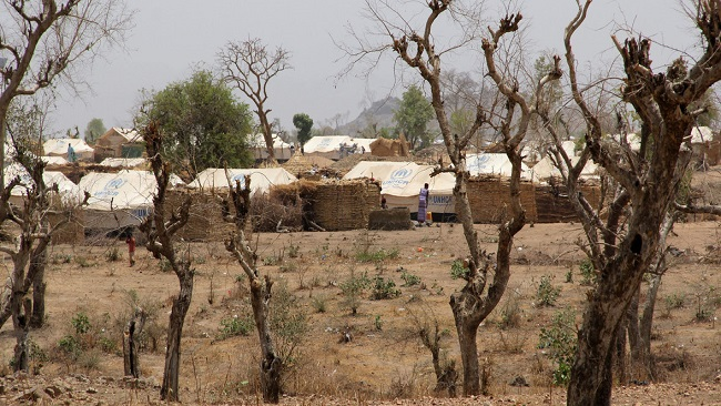 Do not send refugees back to the violence they fled from, UN agency urges Cameroon