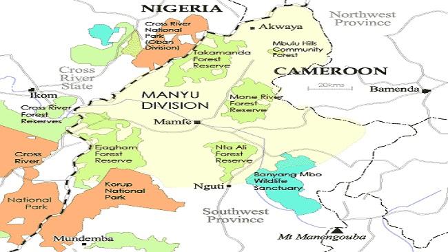Southern Cameroons Crisis: Three Anglophone troops among several killed in Ekok ambush