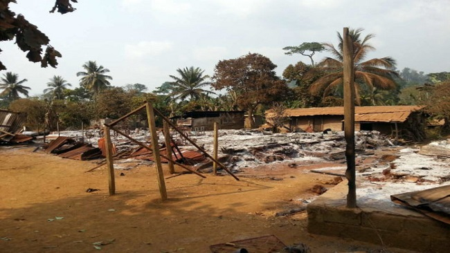 Ending the war in Southern Cameroons: Regime change in Yaoundé is the only option
