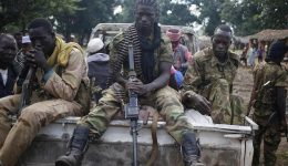 Bangui: Pro-government forces capture ex-president's stronghold
