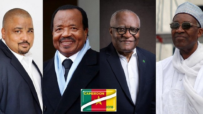 No EU observers for Cameroon presidential election
