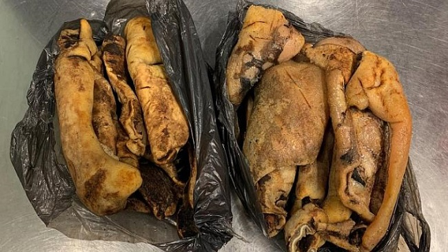 Germany: Customs officers stop Cameroon woman with 7 Kilos of rotten smoked cow-skin in Düsseldorf Airport