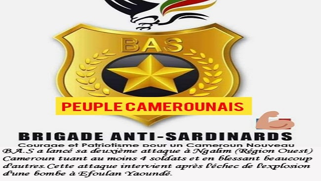Brigade Anti-Sardinards, Ambazonians making life very difficult for Biya and other CPDM criminals who travel