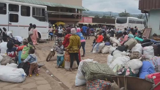 Coronavirus cases in Africa rise to over 14,000