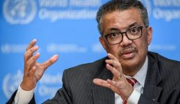 WHO chief Tedros plans to seek second term: report