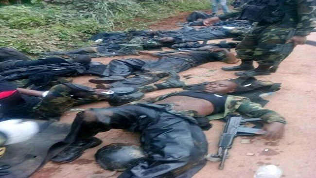 Southern Cameroonians must join hands to expel French Cameroun army soldiers