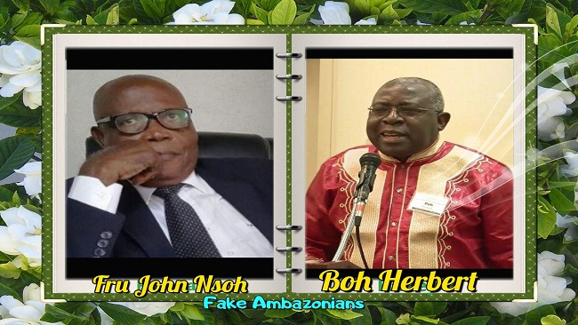 Southern Cameroons Crisis: The smearing has begun!