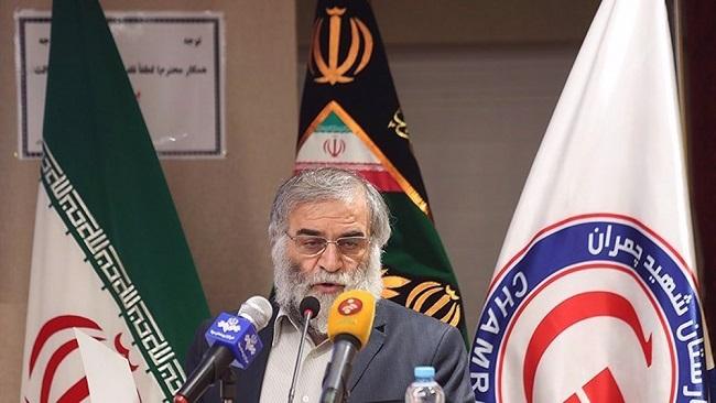 Severe revenge for scientist's assassination put on Iran's agenda