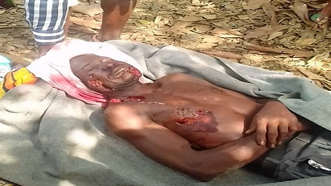 Southern Cameroons Crisis: The military is carrying out summary executions