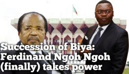 CPDM Crime Syndicate: Is Minister Ngoh Ngoh losing his influence?