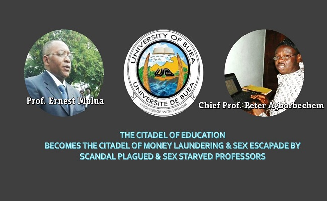 University of Buea marks-for-sex scandal: Prof. Peter Agborbechem and Dr. Ernest Molua demoted