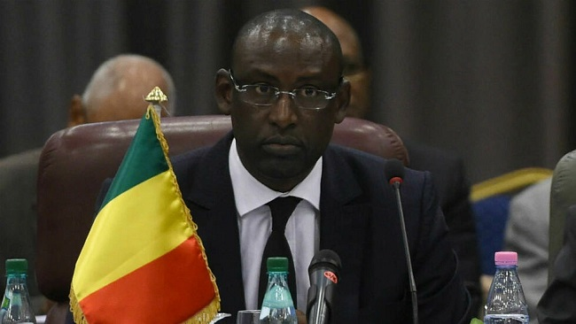 Mali's foreign ministry summons French ambassador to protest Macron comments
